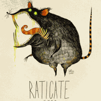 raticate pokemon burton tim