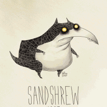 sandshrew pokemon burton tim