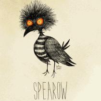 spearow pokemon burton